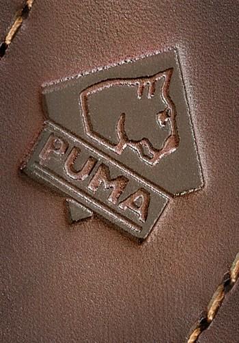Puma Olive