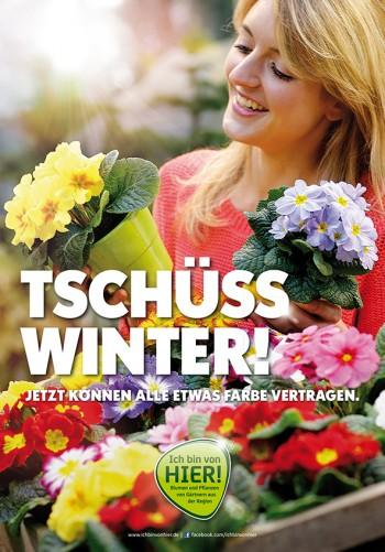 Neues für den Frühling